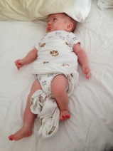"""""""I don't understand you think these swaddle things you put around me help me sleep."""""""